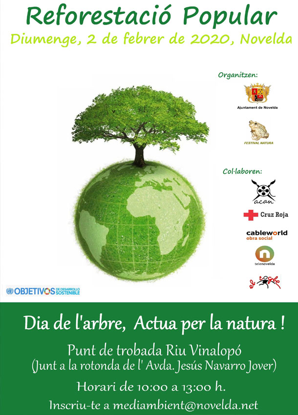 Cartel reforesta web